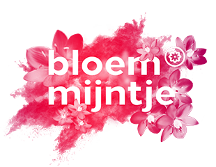 Logo_Bloemmijntje_310x240